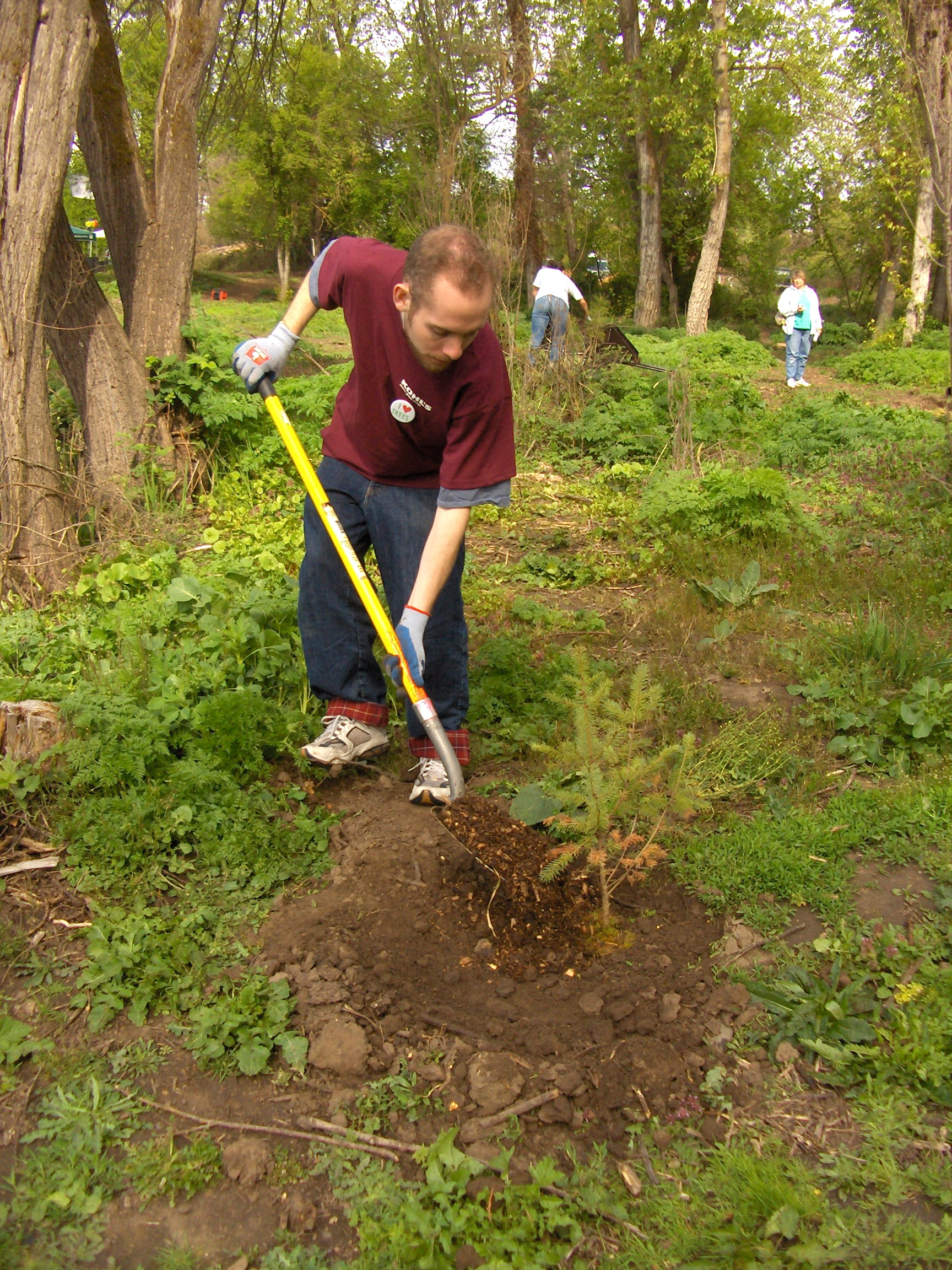 Volunteers from Kohl's plant native trees along Bear Creek in Medford.