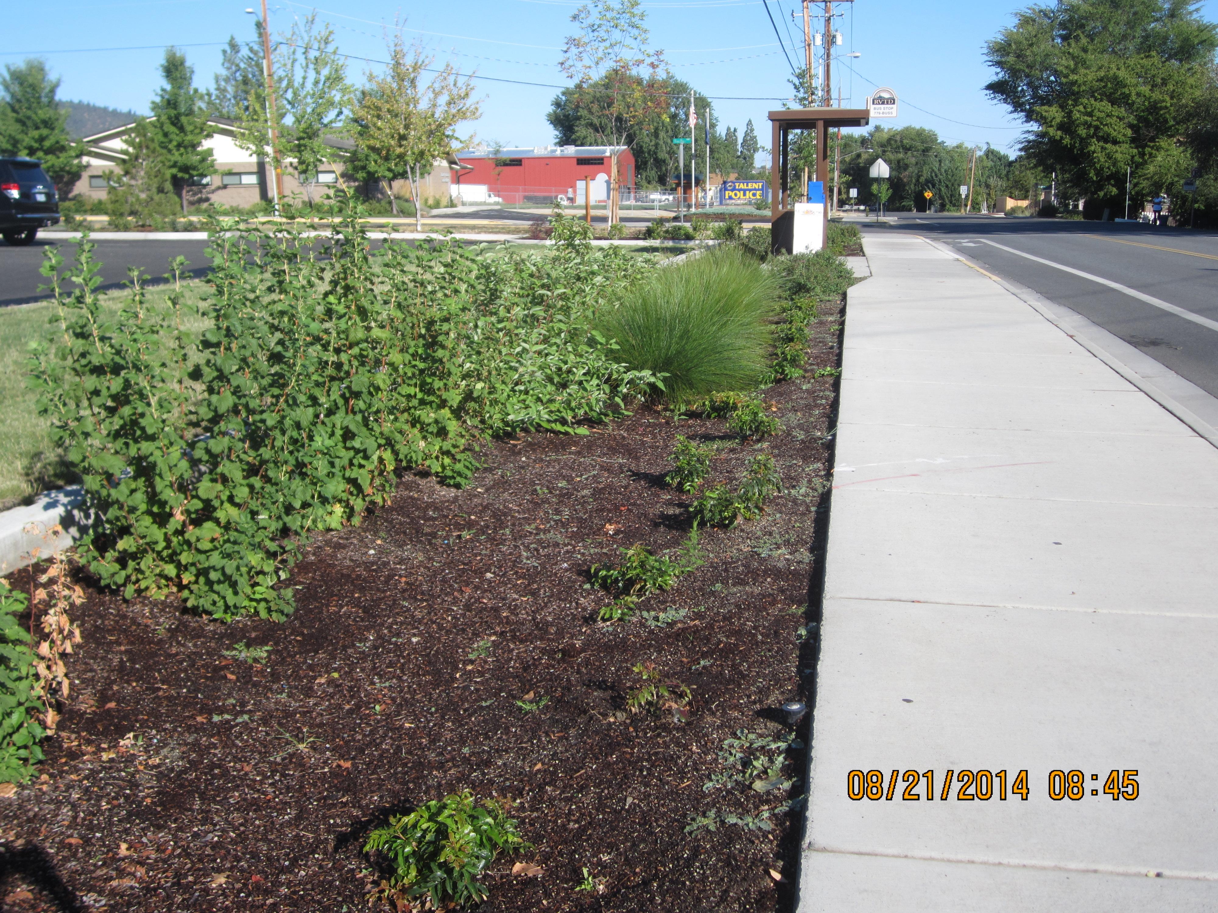 Stream Smart Landscaping