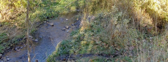 <b>Beach Creek in Ashland</b>