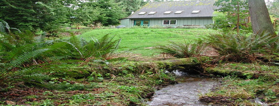 Riparian House on Stream